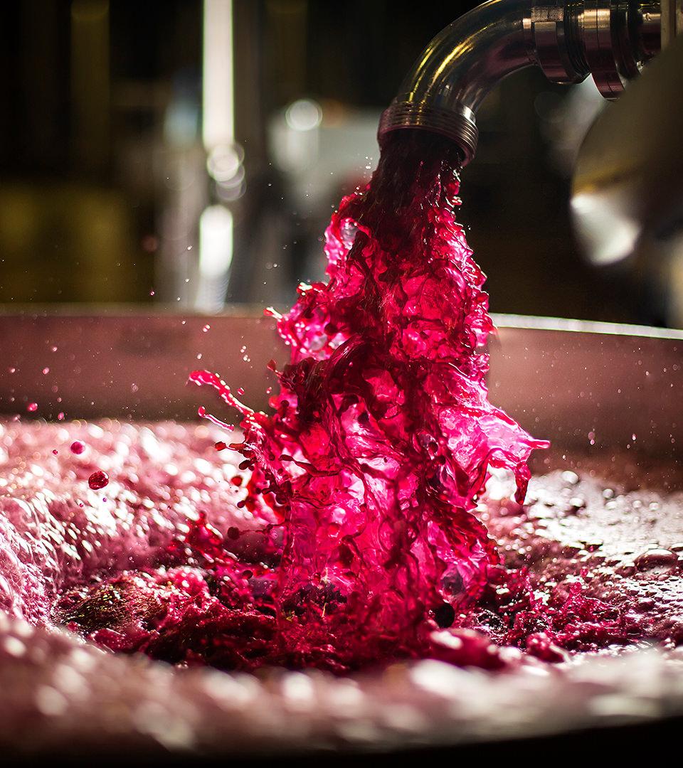 L'alchimie de la vinification