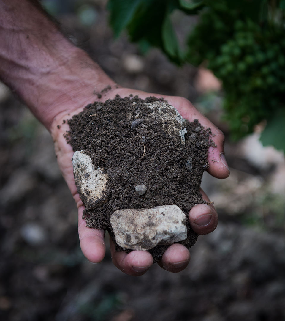 Les Terres argilo calcaire